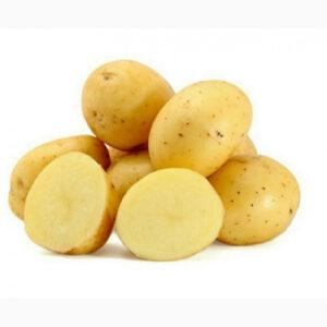 Картопля насіннева